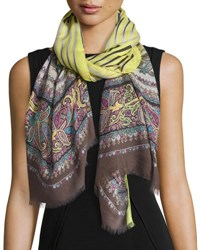 Etro Wool Blend Stripe And Paisley Scarf Citron