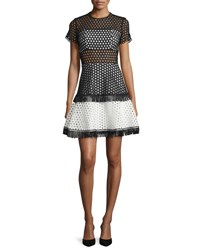 Alexis Cinthia Short Sleeve Eyelet Mesh Mini Dress Black White Black White Circl