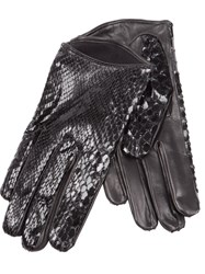 Imoni Snakeskin Print Gloves Black