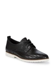 Earth Camino Lace Up Oxfords Black