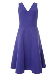 Dorothy Perkins Tall Purple Fit And Flare Dress