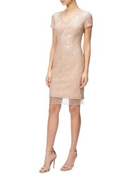 Adrianna Papell Sequin Lace And Organza Cap Sleeve Cocktail Dress Blush Nude