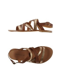 Tatoosh Sandals Cocoa