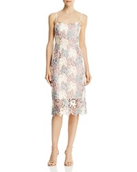 Decode 1.8 Lace Sheath Dress Blush Multi
