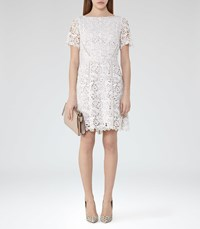 Reiss Eleania Womens Lace Fit And Flare Dress In Cream