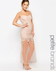 Maya Petite Maxi Dress With Lace Body And Sheer Hem Nude Cream