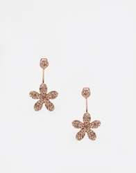 Love Rocks Daisy Throu And Throu Stud Earrings Gold