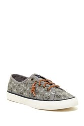 Sperry Pier View Anchor Print Sneaker Gray
