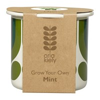 Orla Kiely Grow Your Own Kit Striped Tulip Pot Mint