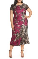 Js Collections Plus Size Two Tone Embroidered Lace Dress Black Magenta