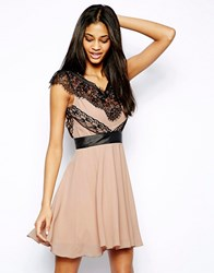 Elise Ryan Contrast Skater Dress In Eyelash Lace Nude Cream