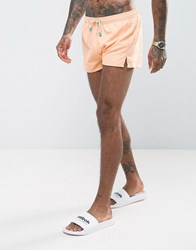 Oiler And Boiler Chevy Swim Short In Peach Pink