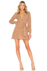 Clayton Kellie Dress Brown
