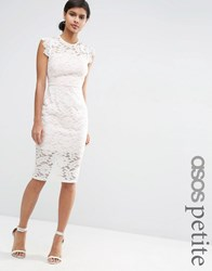 Asos Petite Lace Pencil Dress With Contrast Lining Ivory White