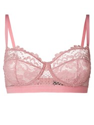 Else Lace Embroidered Bra Pink And Purple