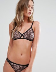 Y.A.S Leopard Print Soft Triangle Bralette Multi