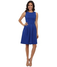 Calvin Klein Fit Flare W Slim Pleat Regatta Women's Dress Multi