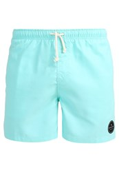 Rip Curl Bondi Road Volley Swimming Shorts Lime Punch Green