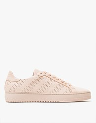 Off White Leather Sneaker In Pink Light Pink