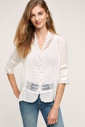 Burning Torch Laceflower Shirt White