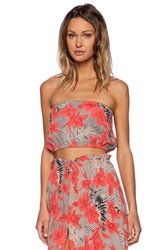 For Love And Lemons Mai Tai Bandeau Crop Top Pink