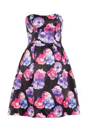 Wolf And Whistle Lilac Rose Prom Dress Multi Coloured