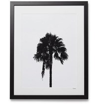Sonic Editions Framed 2017 Palm Tree Print 16 Black