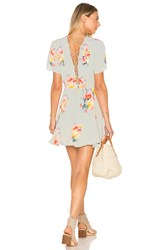 Privacy Please Henson Dress Mint