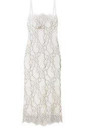 Dion Lee Lory Corded Lace And Cutout Neoprene Dress White
