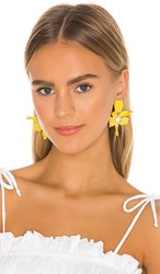 Lele Sadoughi Small Crystal Lily Earrings In Yellow. Sunflower