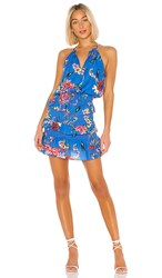 Parker Karolina Dress In Blue. Zinnea