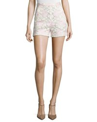 Giambattista Valli High Waist Lace Shorts Pink White Pink White