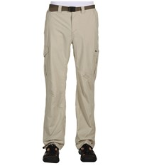 Columbia Silver Ridge Cargo Pant Fossil Men's Clothing Beige