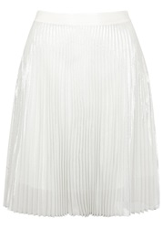 Clu Silver Pleated Organza Skirt