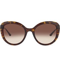 Emporio Armani Ar8065 H Havana Cat Eye Sunglasses