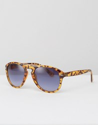 Jeepers Peepers Sunglasses Brown