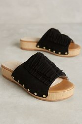 Anthropologie Lien. Do By Seychelles Ensenada Clogs Black 6 Wedges