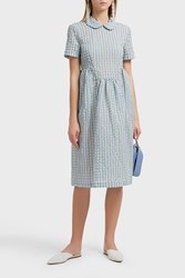 Shrimps Checkered Print Dress Blue