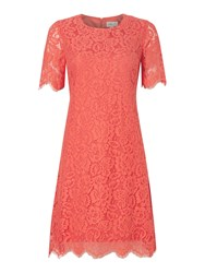 Eliza J Three Quarter Sleeve Floral Lace Dress Coral