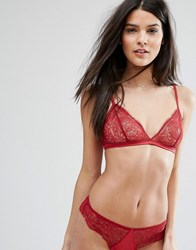 Mango Triangle Lace Bralet Red