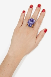 Nasty Gal From St Xavier Kato Ring