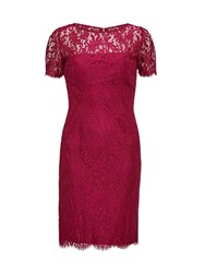 Gina Bacconi Bright Wine Scallop Eyelash Lace Dress Red