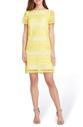 Tahari Stripe Lace Sheath Dress Maize White