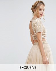 Lace And Beads Cropped Top With Embellishment Open Back Co Ord Cream