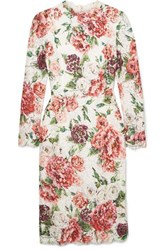 Dolce And Gabbana Floral Print Corded Lace Midi Dress Pink