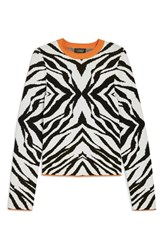 Topshop Zebra Skinny Sweater Black Multi