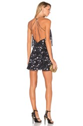 Animale Open Back Halter Dress Black
