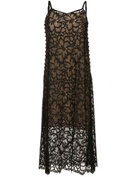Aula Knitted Floral Dress Black