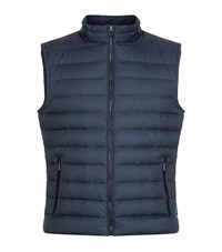 Hackett Country Gilet Male Navy