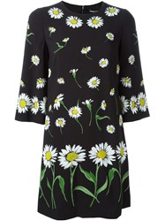 Dolce And Gabbana Daisy Print Dress Black